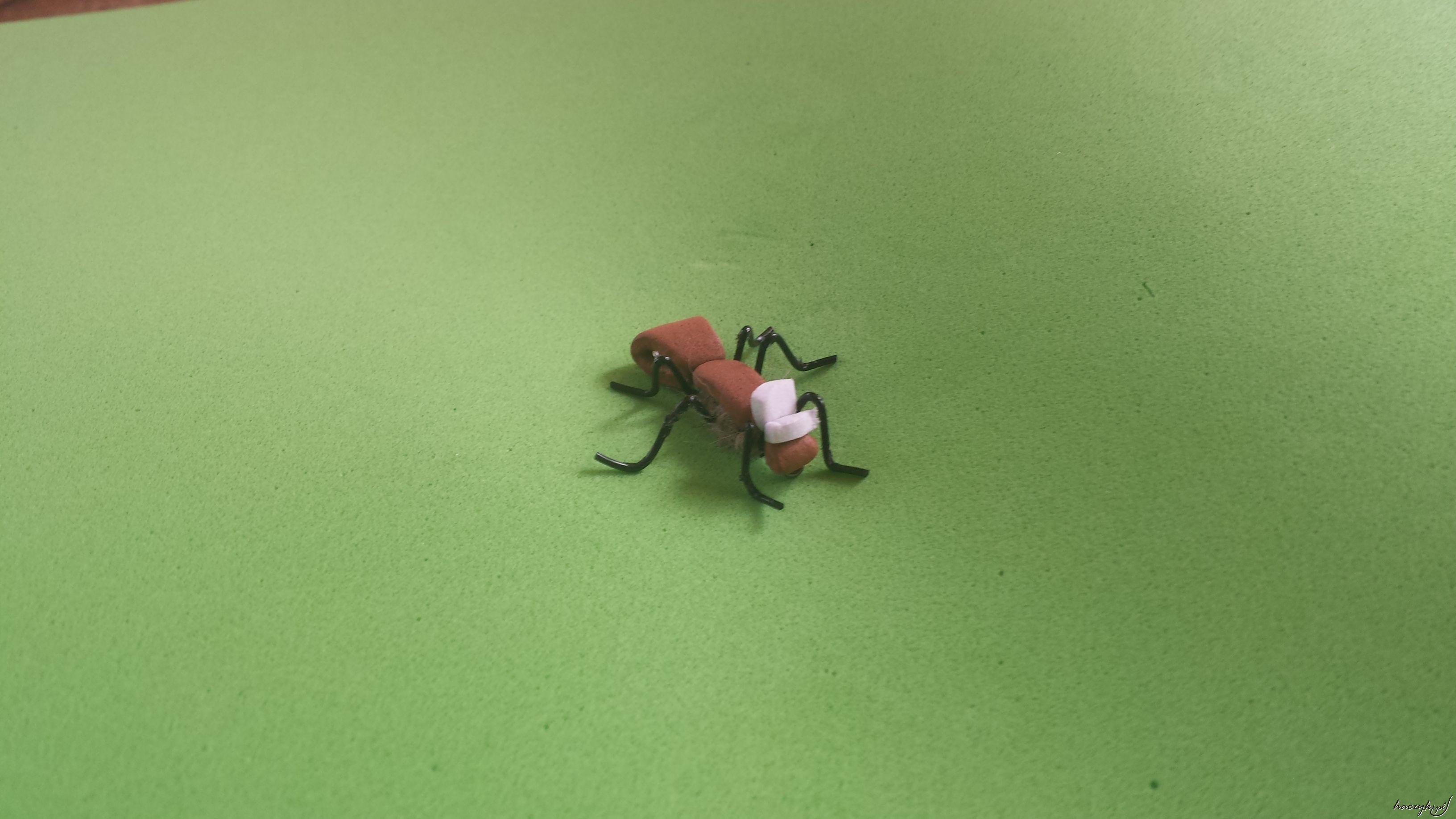 Mucha mrówka