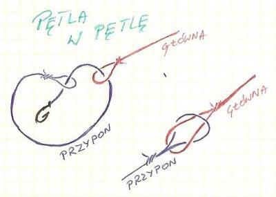 petla_w_petle.jpg