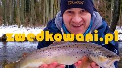 Blog Zwędkowani