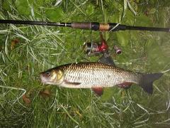 Jak dziś było na rybach?